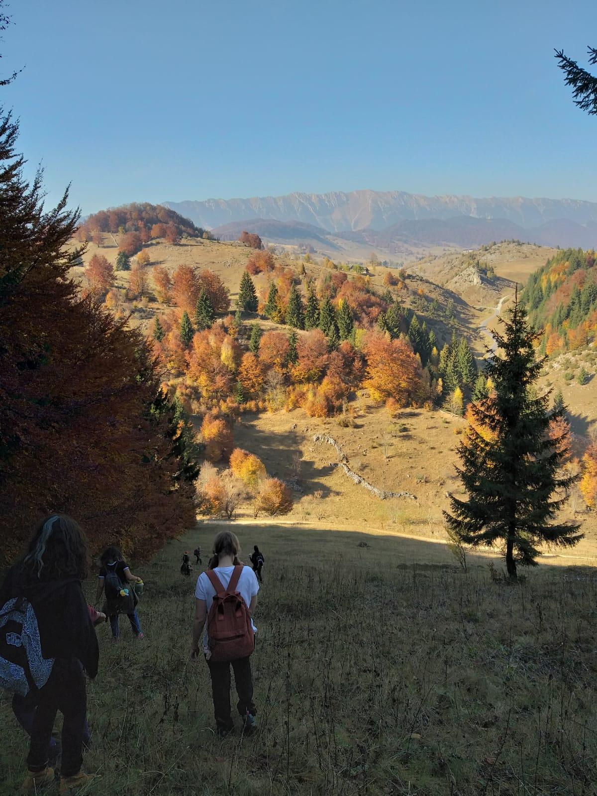 Vizitează Transilvania: idei de excursie la munte