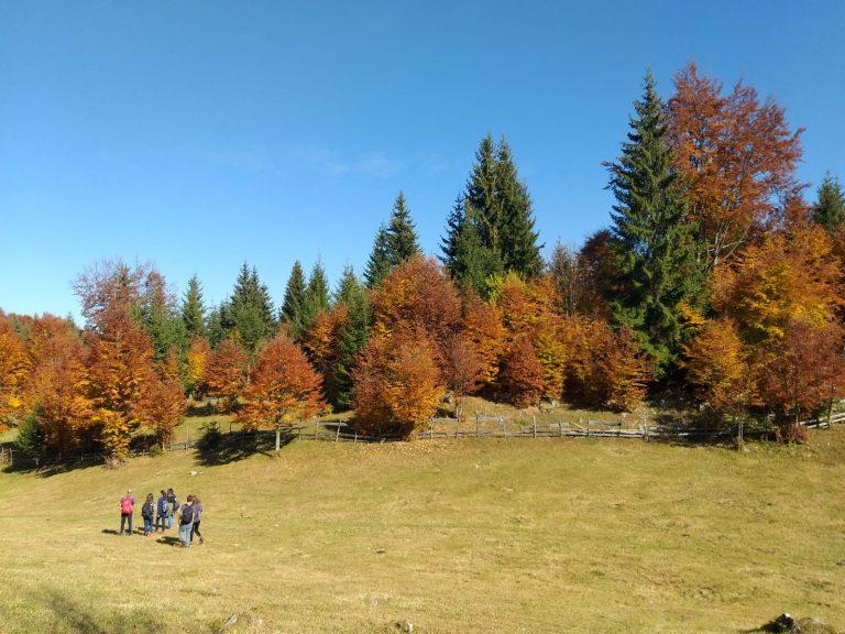 excursie Transilvania munte