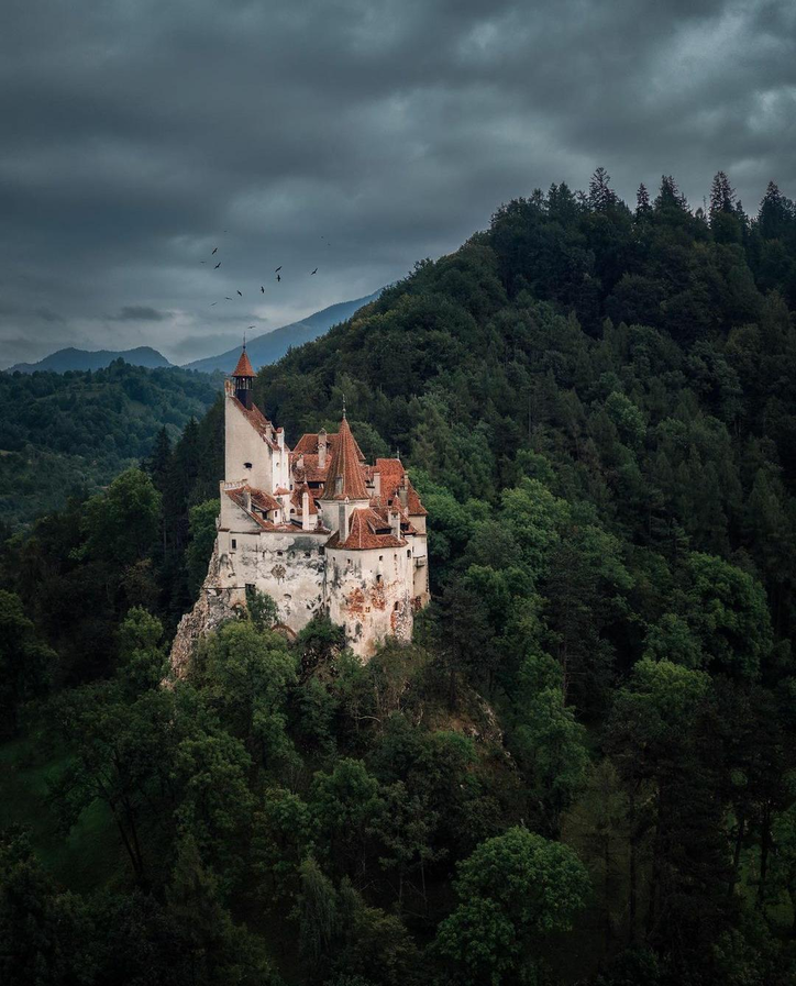 transilvania localnici