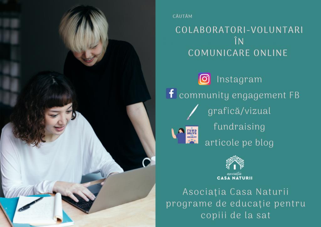 voluntari online