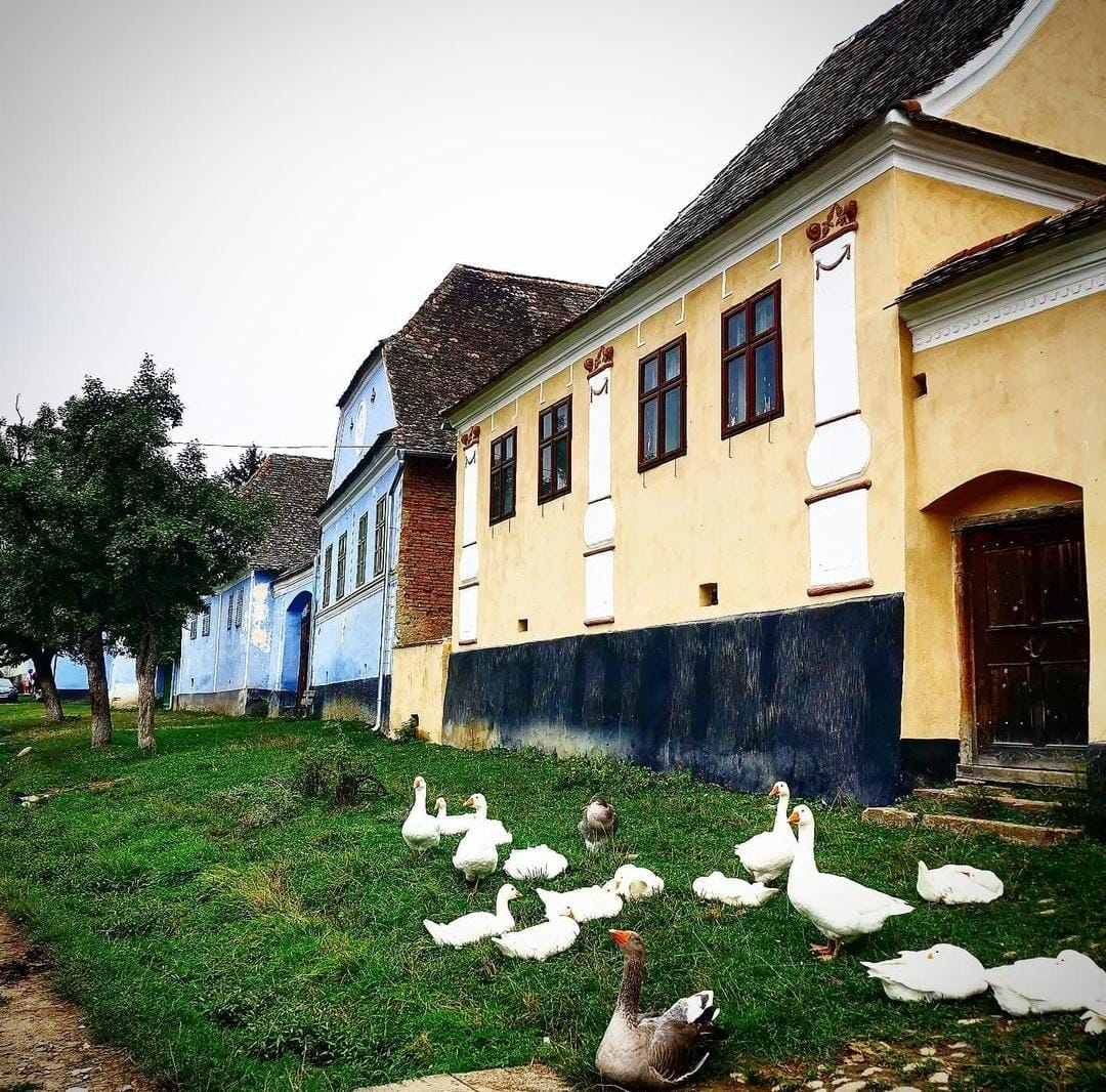 You are currently viewing Locuri transilvănene din patrimoniul UNESCO